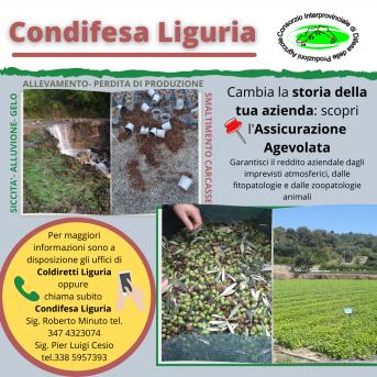 CONDIFESA LIGURIA